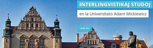 Interlingvistikaj Studoj UAM